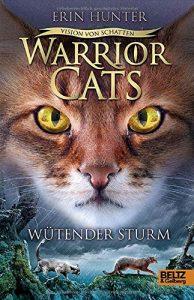 Coverfoto Warrior Cats- Vision von Schatten Wütender Sturm